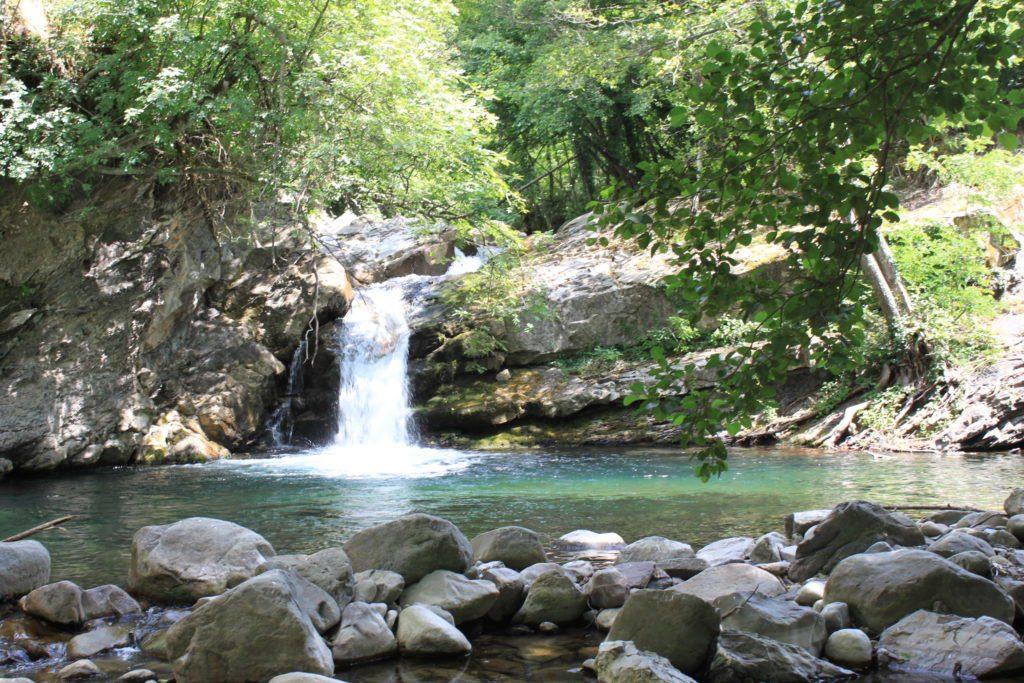 Il lago Palino: biopiscina naturale